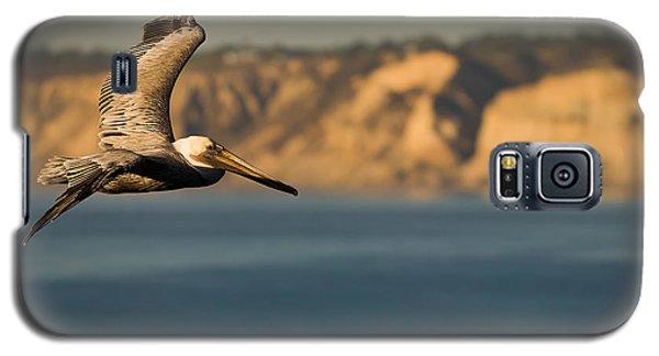 Gliding Pelican Galaxy S5 Case by Sebastian Musial