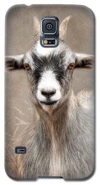 Goat Portrait Galaxy S5 Case by Lori Deiter