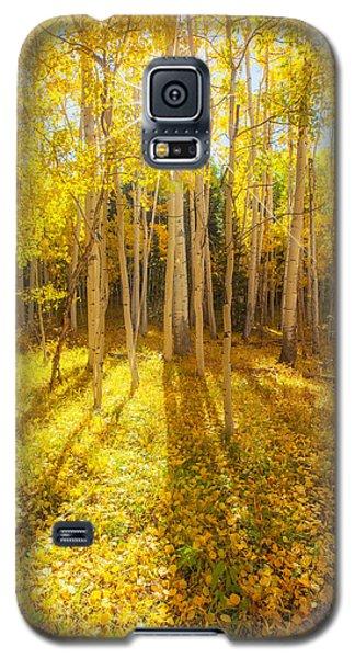 Golden Galaxy S5 Case by Darren  White