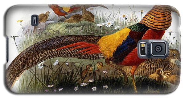 Golden Pheasants Galaxy S5 Case by Joseph Wolf