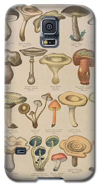 Good And Bad Mushrooms Galaxy S5 Case by French School