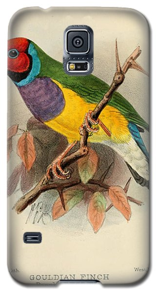 Gouldian Finch Galaxy S5 Case by J G Keulemans