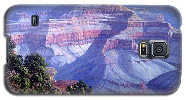 Grand Canyon Galaxy S5 Case by Randy Follis