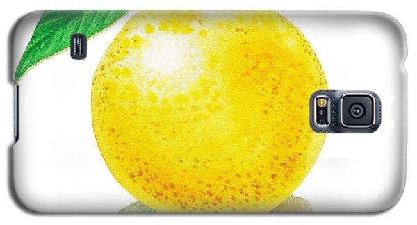 Grapefruit Galaxy S5 Case by Irina Sztukowski