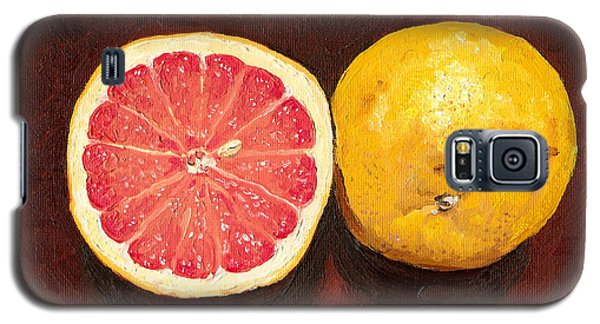 Grapefruits Oil Painting Galaxy S5 Case by