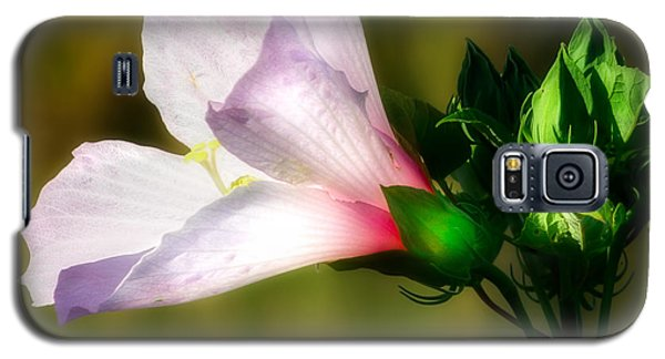 Grasshopper And Flower Galaxy S5 Case by Mark Andrew Thomas