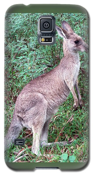 Grazing In The Grass Galaxy S5 Case by Ellen Henneke