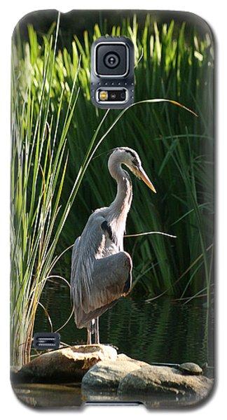 Great Blue Heron Galaxy S5 Case by Ellen Henneke
