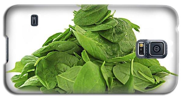 Green Spinach Galaxy S5 Case by Elena Elisseeva