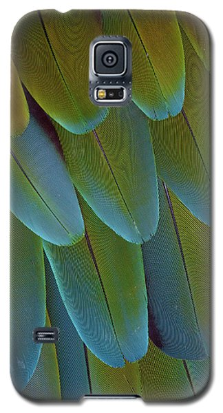Green-winged Macaw Wing Feathers Galaxy S5 Case by Darrell Gulin