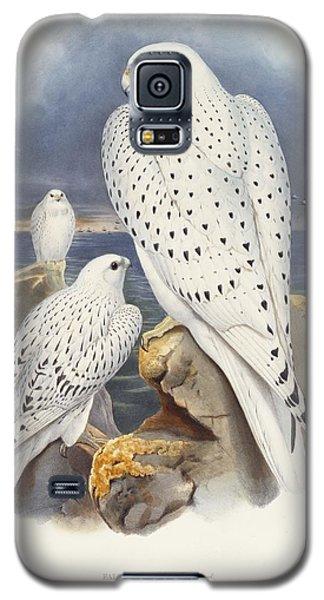Greenland Falcon Galaxy S5 Case by John Gould