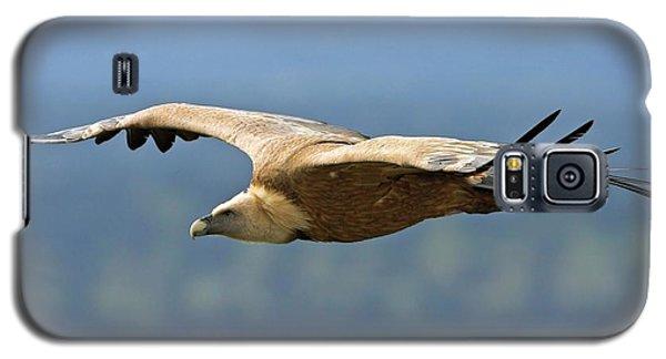 Griffon Vulture In Flight Galaxy S5 Case by Bildagentur-online/mcphoto-schaef