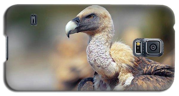 Griffon Vulture Galaxy S5 Case by Nicolas Reusens