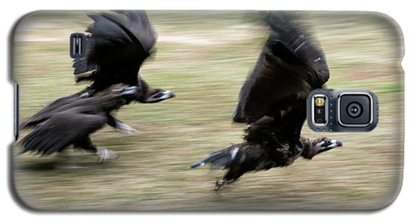 Griffon Vultures Taking Off Galaxy S5 Case by Pan Xunbin