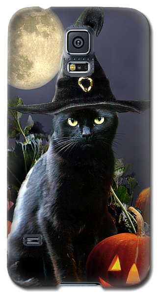Witchy Black Halloween Cat Galaxy S5 Case by Regina Femrite