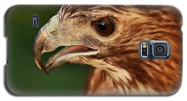 Hawk Eyes Galaxy S5 Case by Dan Sproul
