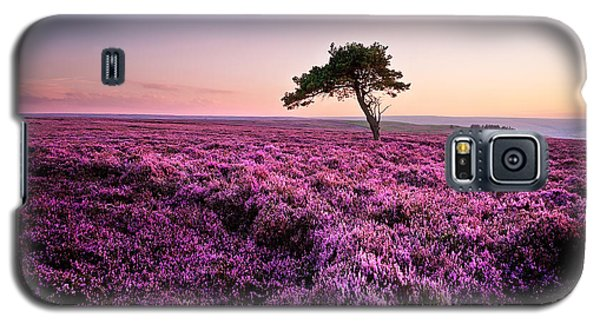 Tree Galaxy S5 Cases - Heather at Sunset Egton Moor Galaxy S5 Case by Janet Burdon