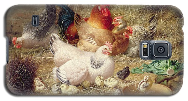 Hens Roosting With Their Chickens Galaxy S5 Case by Eugene Remy Maes