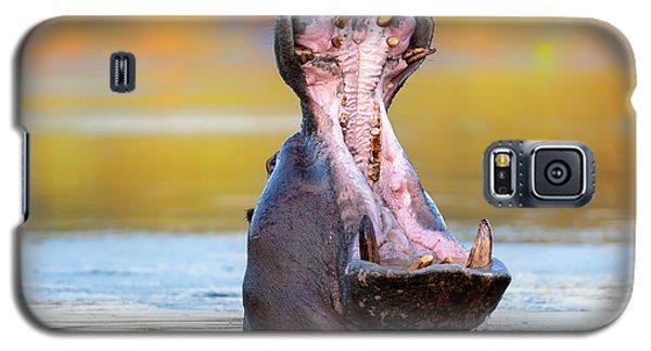 Hippopotamus Displaying Aggressive Behavior Galaxy S5 Case by Johan Swanepoel