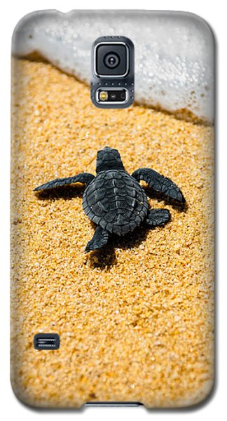 Summer Galaxy S5 Cases - Home Galaxy S5 Case by Sebastian Musial