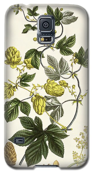 Hop Vine From The Young Landsman Galaxy S5 Case by Matthias Trentsensky