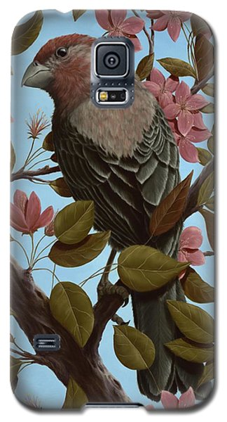 House Finch Galaxy S5 Case by Rick Bainbridge