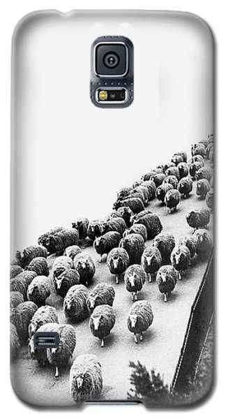 Hyde Park Sheep Flock Galaxy S5 Case by Underwood Archives