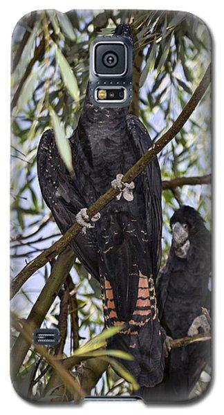 I Say Old Chap Galaxy S5 Case by Douglas Barnard