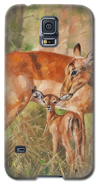 Impala Antelop Galaxy S5 Case by David Stribbling