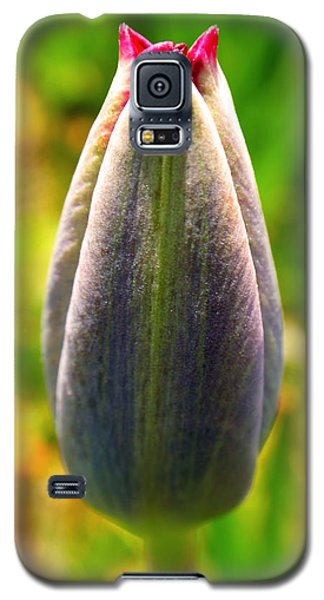 In The Beginning Galaxy S5 Case by Rona Black