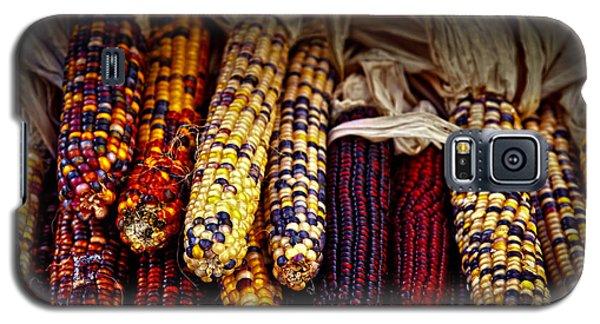 Indian Corn Galaxy S5 Case by Elena Elisseeva