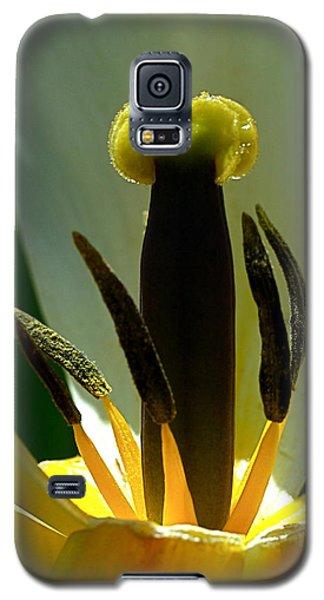 Inner Workings Galaxy S5 Case by Rona Black