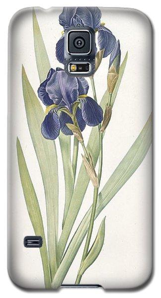 Iris Germanica Bearded Iris Galaxy S5 Case by Pierre Joseph Redoute