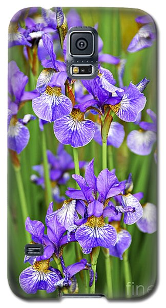 Irises Galaxy S5 Case by Elena Elisseeva