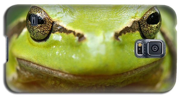 It's Not Easy Being Green _ Tree Frog Portrait Galaxy S5 Case by Roeselien Raimond