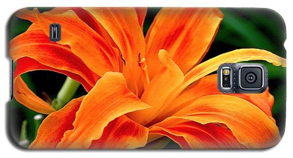 Kwanso Lily Galaxy S5 Case by Rona Black