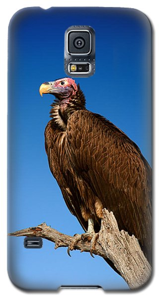 Lappetfaced Vulture Against Blue Sky Galaxy S5 Case by Johan Swanepoel