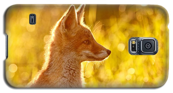 Red Galaxy S5 Cases - Le Ptit Renard Galaxy S5 Case by Roeselien Raimond