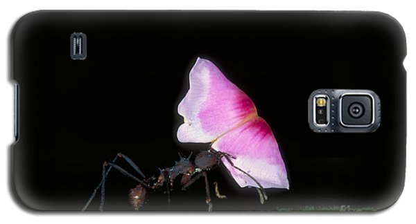 Leafcutter Ant Galaxy S5 Case by Gregory G. Dimijian