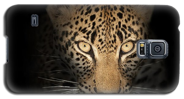 Leopard In The Dark Galaxy S5 Case by Johan Swanepoel