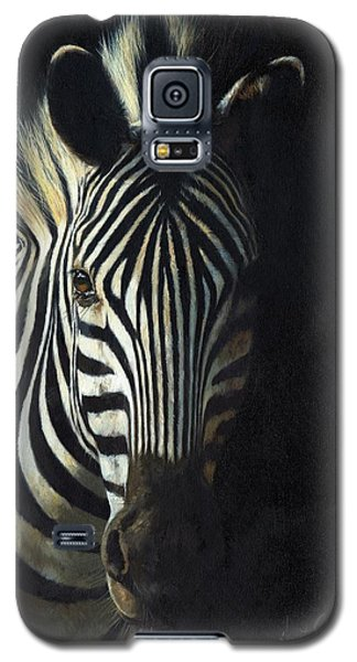 Light And Shade Galaxy S5 Case by David Stribbling