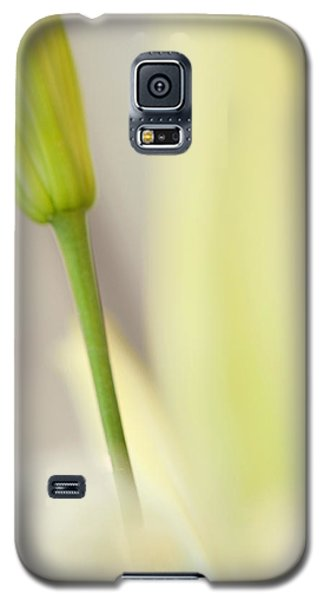 Lily Delight. Floral Abstract Galaxy S5 Case by Jenny Rainbow
