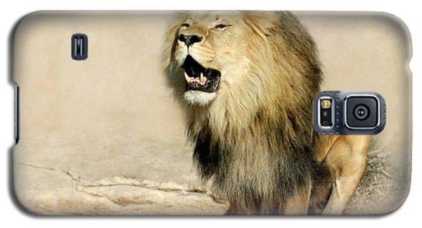 Lion Galaxy S5 Case by Heike Hultsch