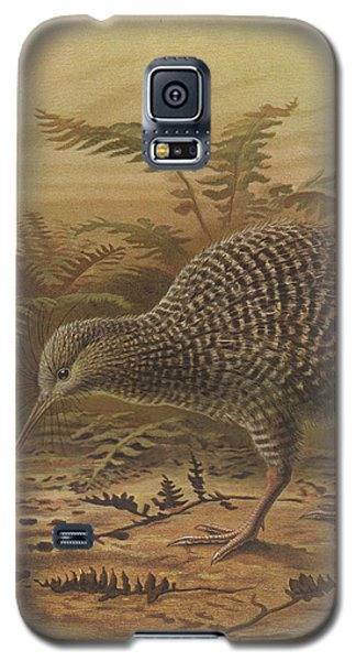 Little Spotted Kiwi Galaxy S5 Case by J G Keulemans