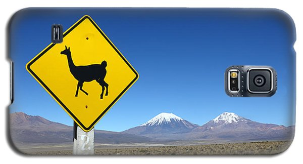 Llamas Crossing Sign Galaxy S5 Case by James Brunker
