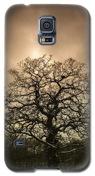 Tree Galaxy S5 Cases - Lone Tree Galaxy S5 Case by Amanda And Christopher Elwell