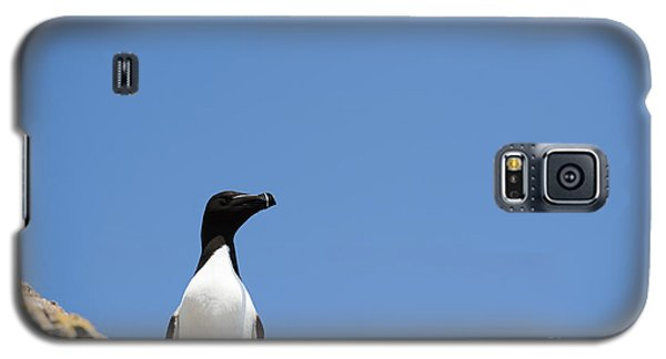 Look At Me Galaxy S5 Case by Anne Gilbert