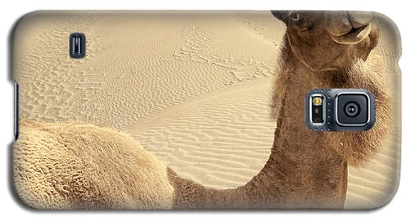 Looking At Ya Galaxy S5 Case by Lourry Legarde