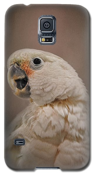 Lots To Say Galaxy S5 Case by Jai Johnson