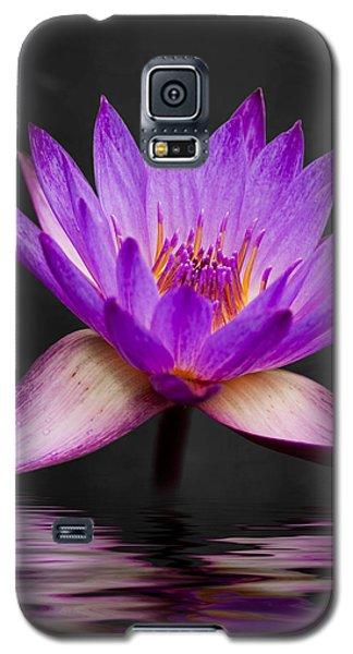 Plant Galaxy S5 Cases - Lotus Galaxy S5 Case by Adam Romanowicz